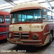 1955 - Berliet PLR10